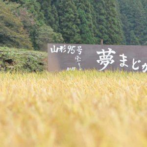 Madoka × 農業